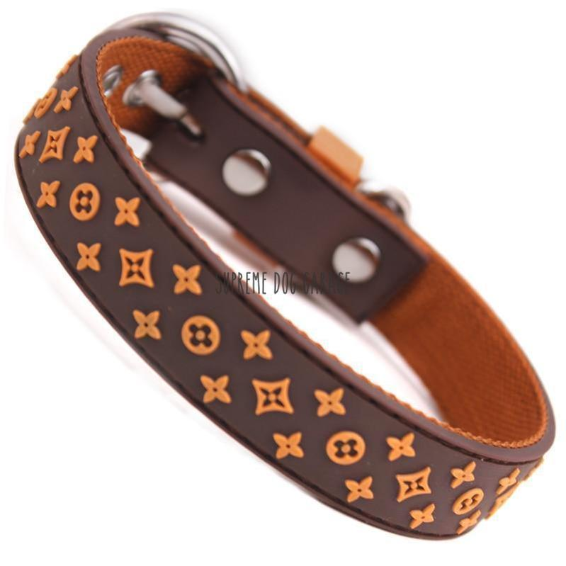 Chewy Designer Dog Collar & Leash Set