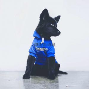Pawlenciaga 2017 Hype Dog Hoodie