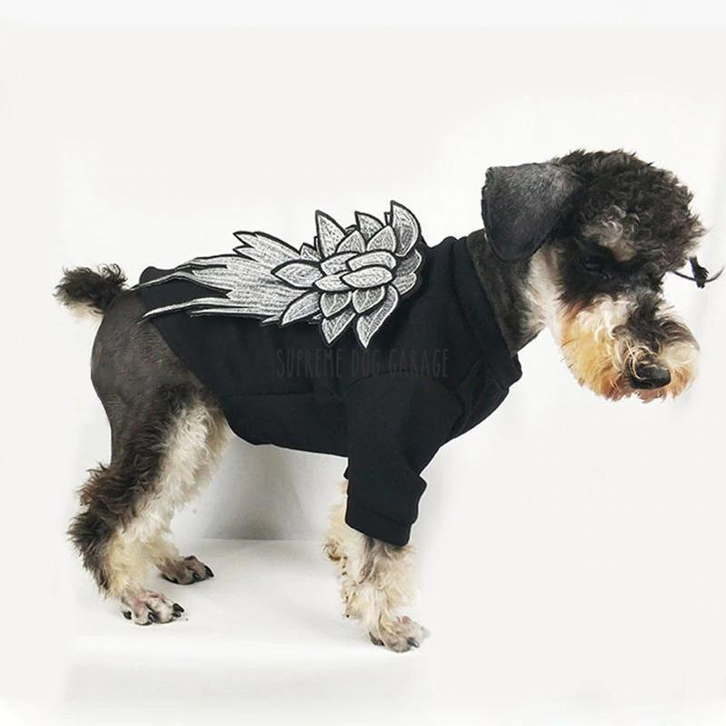 Hype Wingz Dog Sweatshirt