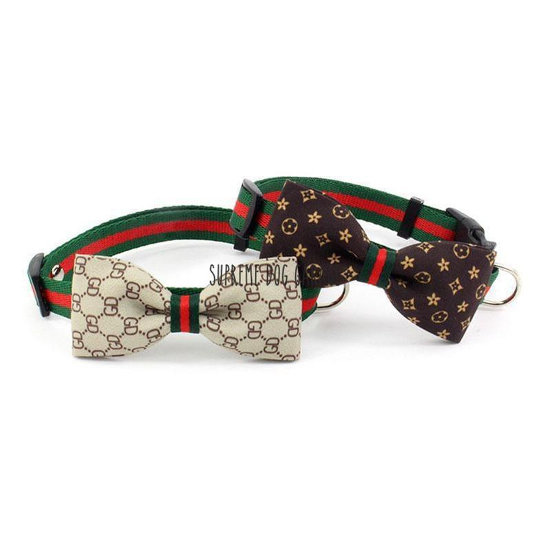 gucci dog collar with bow tie