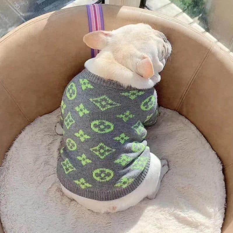 louis vuitton dog sweater