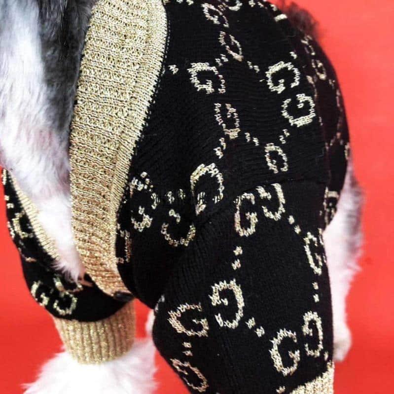 dog cardigan