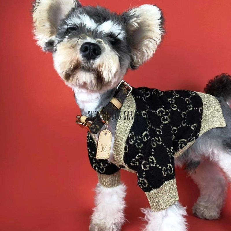 gucci sweater for dog