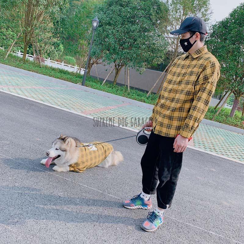 King's Back Dog And Owner Matching Shirts - Set