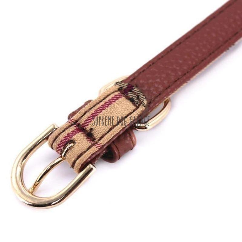 burberry dog collar uk