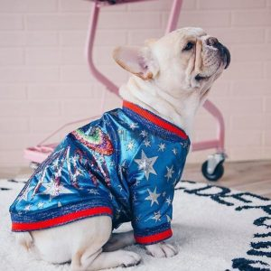 Superstar Retro Dog Bomber Jacket