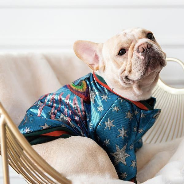 Superstar Retro Dog Bomber Jacket