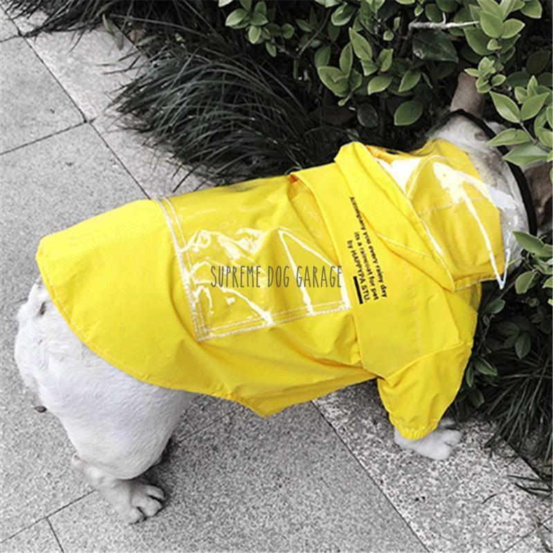 raincoat for french bulldog