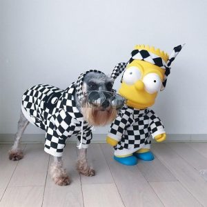 A Barking Pup Checkered Dog Hoodie