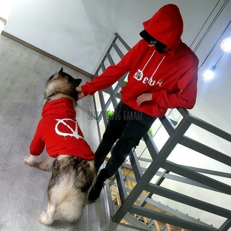 DEVIL'S Matching Dog And Owner Hoodies - Set