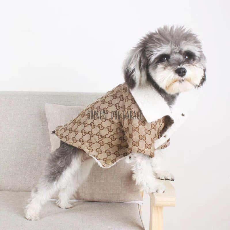 GiGi Pawcci Monogram Winter Dog Coat