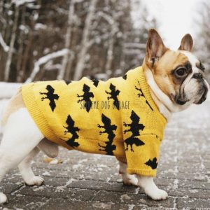 Bat Dog Yellow Sweater