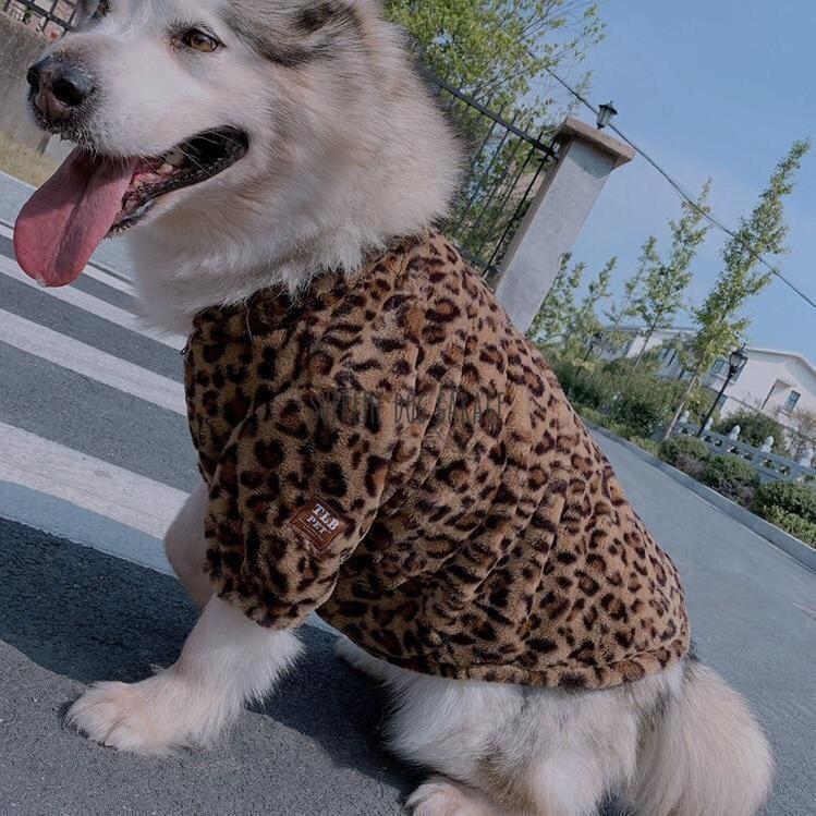 Leopard TLB Pet Winter Coat