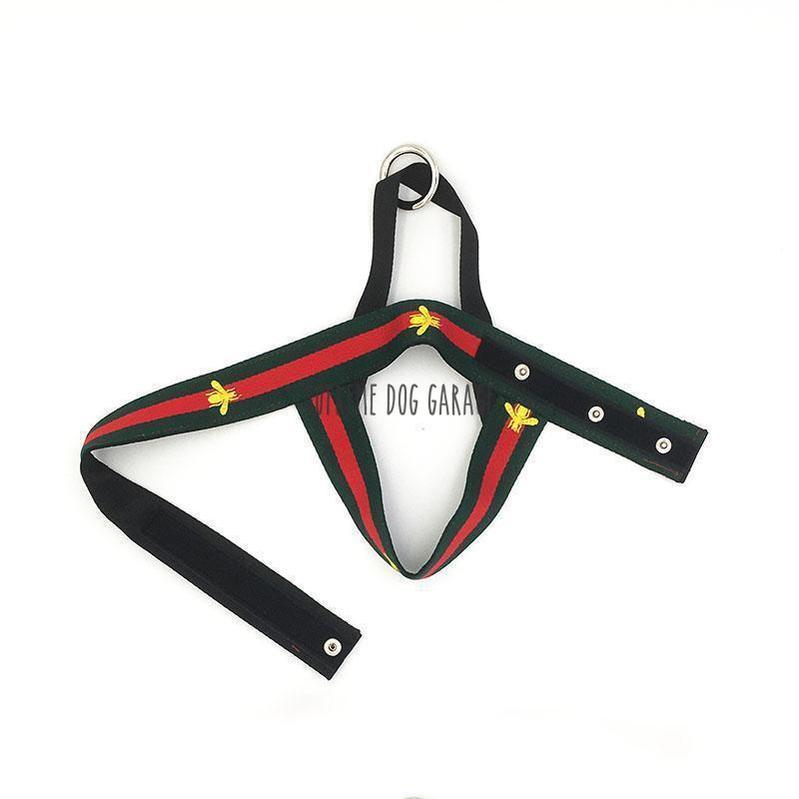 Pawcci Bee Hype Dog Harness & Leash Set