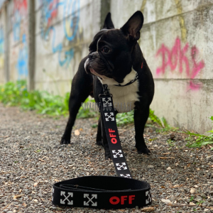 Ultimate Black Widow Dog Collar & Leash