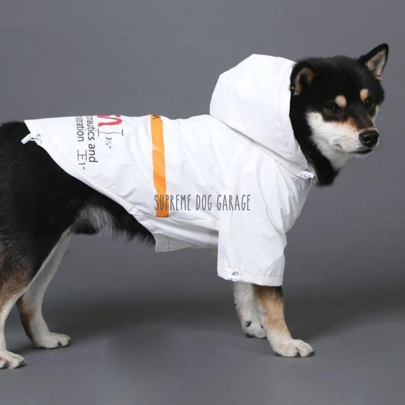 Time Traveler Reflective Dog Windbreaker