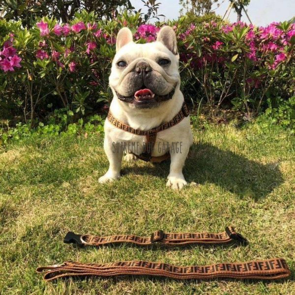 Furendi Step In Designer Dog Harness & Leash