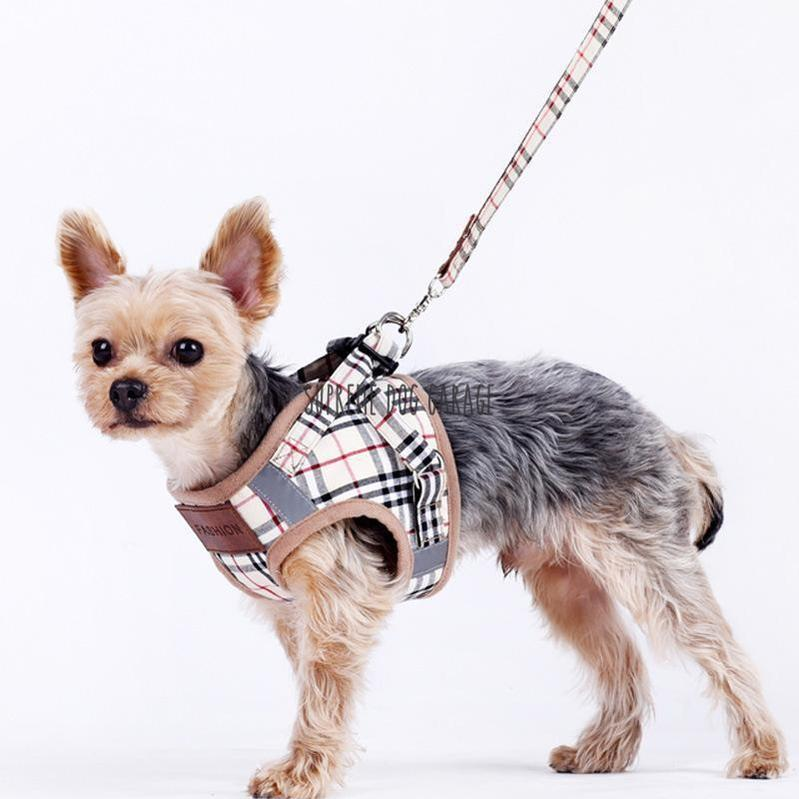 burberry harness for dogs