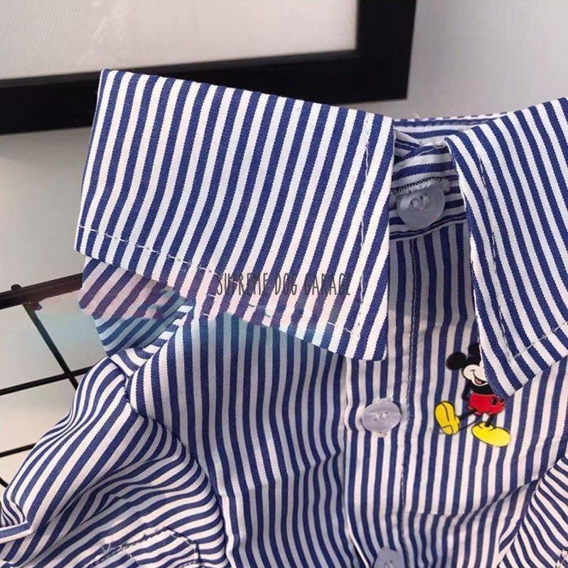 Mickey Striped Designer Dog Shirt