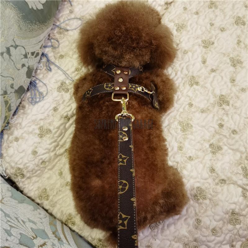 Bonjour Elite Designer Dog Harness & Leash Set