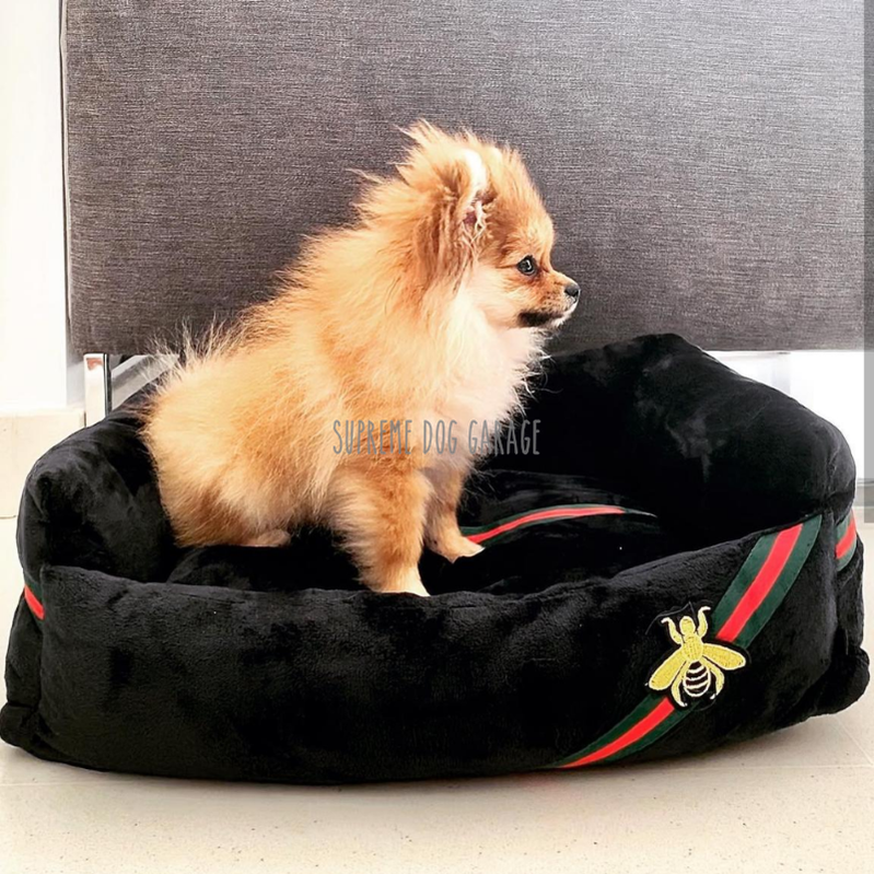 gucci bed for dogs