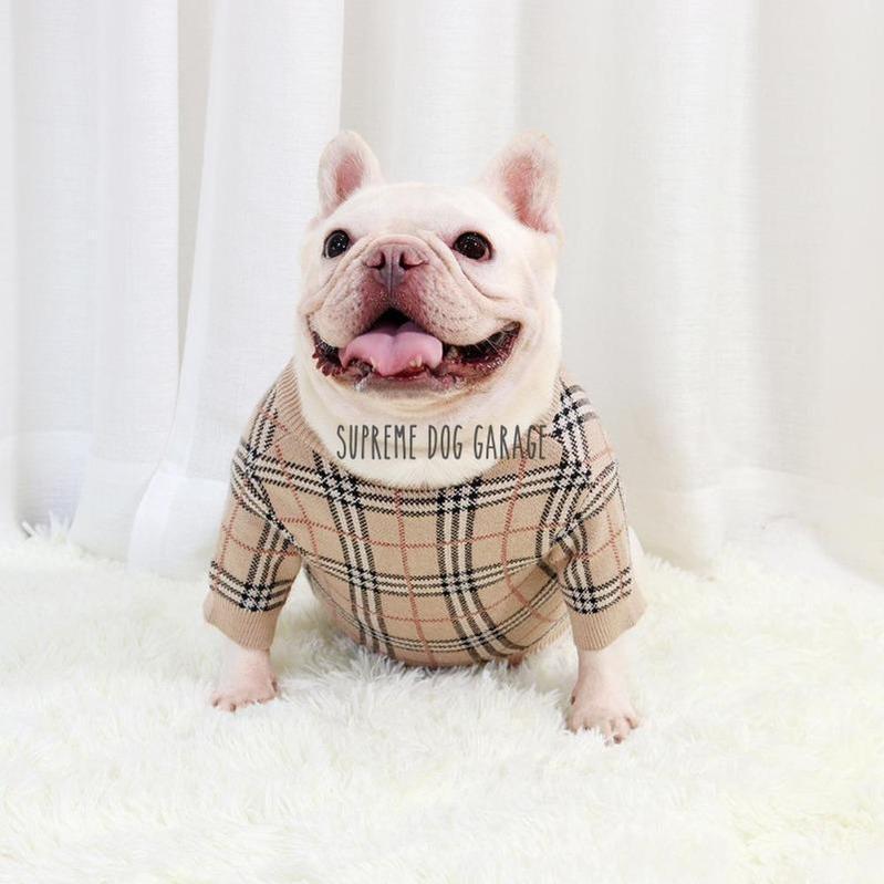 burberry dog sweater
