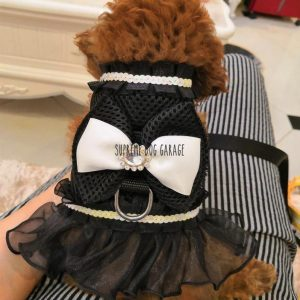 Chewnel Princess Designer Dog Dress Harness & Leash Set