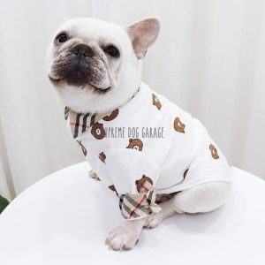 Furry Bear Plaid Designer Dog Shirt