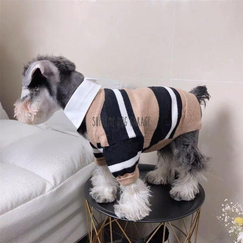 dog cardigan sweater
