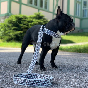 Doggy Dog Harness & Leash Set