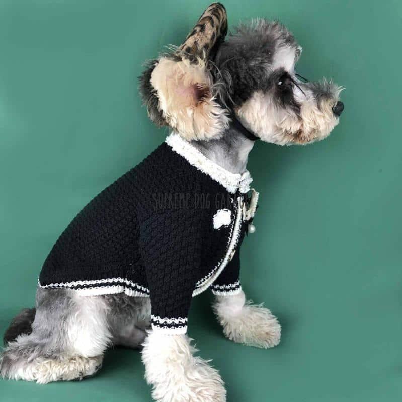 CC Knitted Designer Dog Sweater