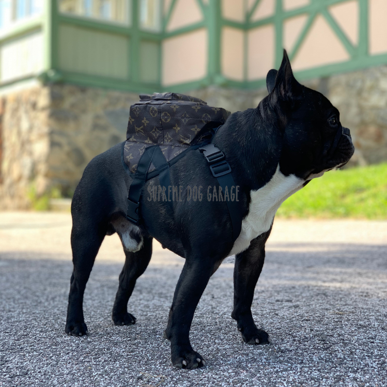 louis vuitton dog backpack harness