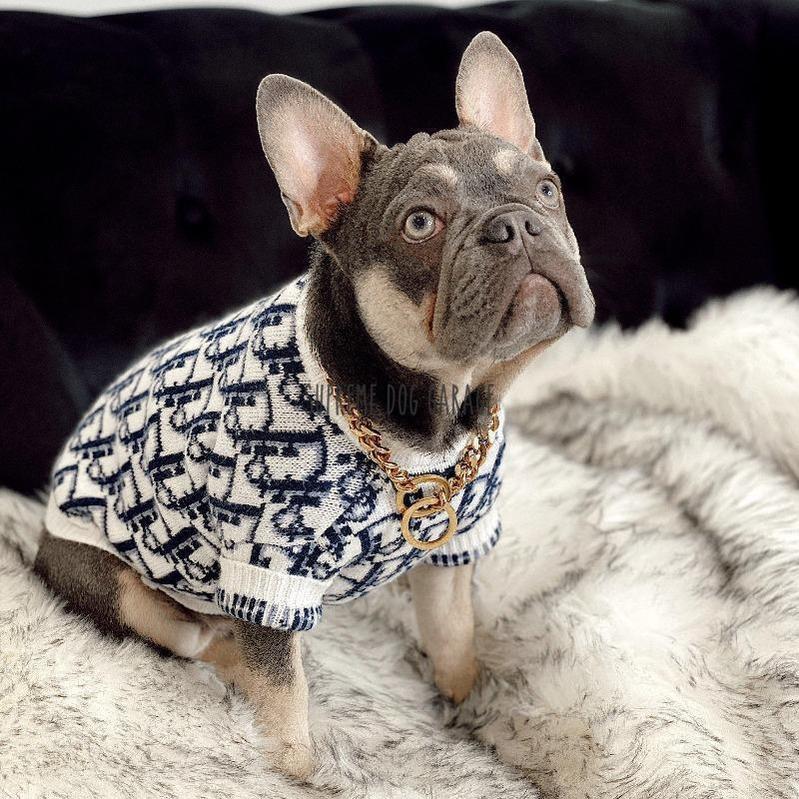 dior dog clothes