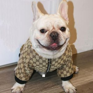 Gigi Monogram Designer Dog Bomber Jacket