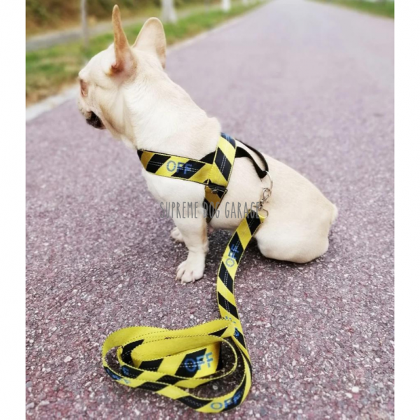 OFF Hype Dog Harness & Leash