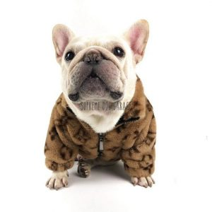 Louie Designer Dog Winter Coat