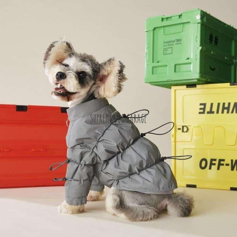 Tawney Bear Winter Dog Puffer Jacket