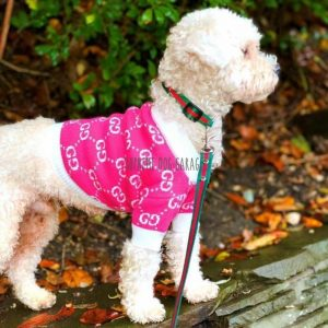 Pink Flamingo GG Designer Dog Sweater