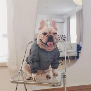 Fear Of Dog Winter Puffer Jacket For Dogs