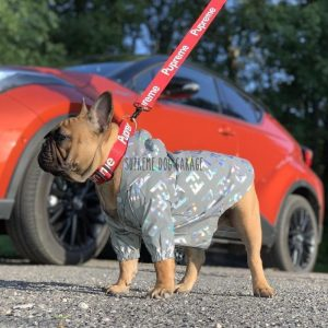 FF Monogram Reflective Dog Windbreaker