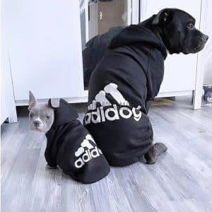 Adidog Origipaws Dog Hoodie