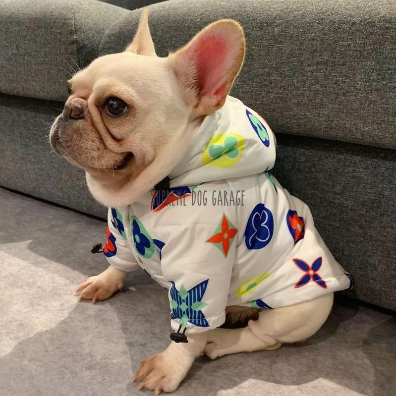 Pawtton Joy Designer Dog Winter Jacket