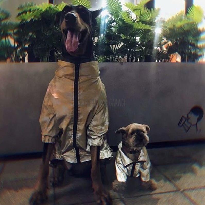 SDG Camo Matching Dog And Owner Reflective Windbreaker Jackets - Set
