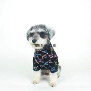GG Spark Premium Dog Sweatshirt