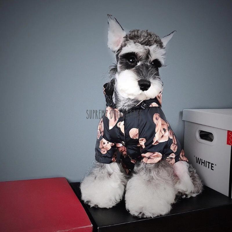 dog hooded raincoat