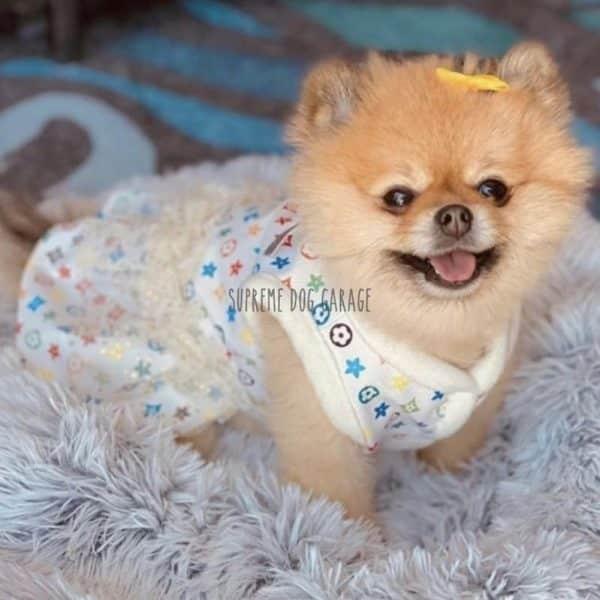 Chewy Flowers Designer Dog Dress