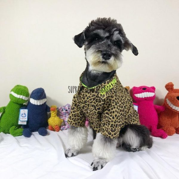 IdolType Leopard Dog Shirt