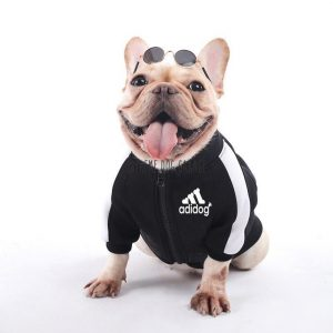 Adi Doggy Designer Dog Jacket