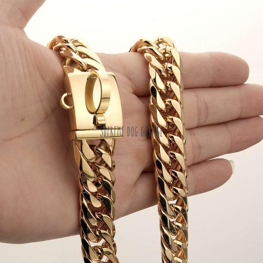 dog gold chain collar