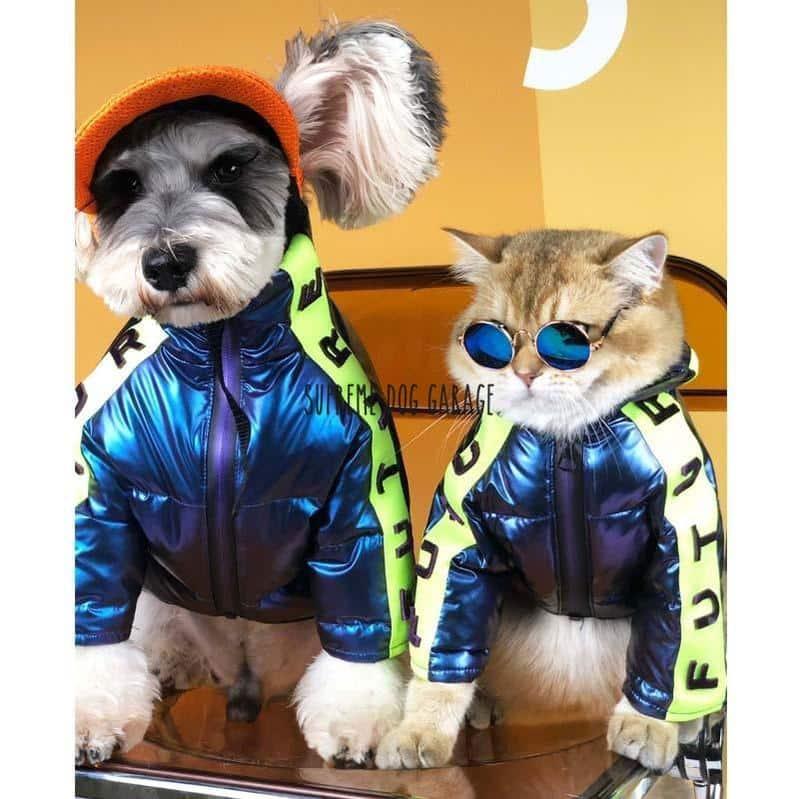FUTURE Hype Dog Winter Jacket